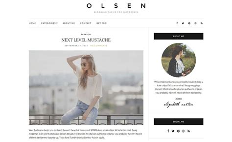 wordpress themes blog download download olsen light free wordpress blog theme wpall club
