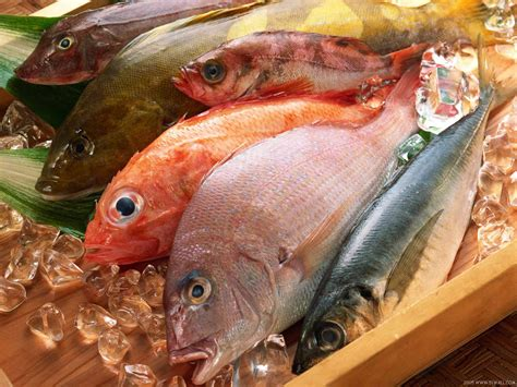 savvy suggestions how to buy and store fish