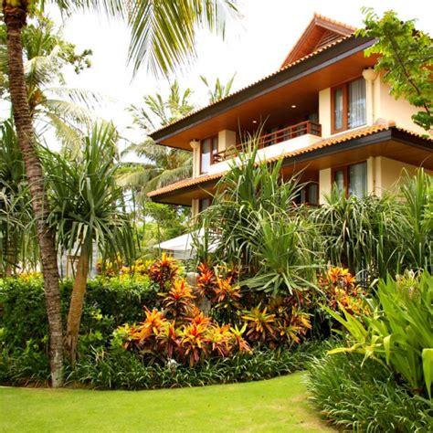 giardino tropicale dai frutti a un giardino tropicale donnad