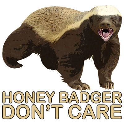 Honey Badger Don T Care Meme - honey badger don t care honey badger know your meme