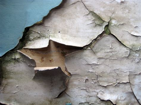 Home Interior Design Raleigh peeling paint how to deal with it macpaint ltd