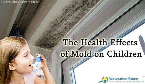 Mould In Carpet Health Risks by The Health Effects Of Mold On Children