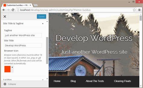 theme callback exle wordpress theme options the customizer api theme