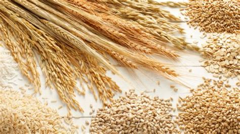 whole grains bad for you why whole grains are for you ndtv food