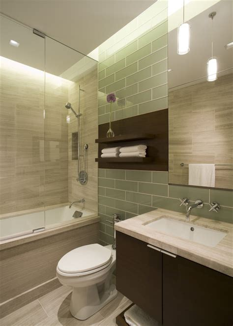 Houzz Bathroom Designs Guest Bathroom Contemporary Bathroom Chicago By Dspace Studio Ltd Aia