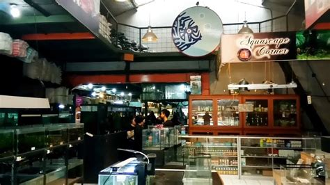 toko perlengkapan tattoo di bandung menyambangi toko akuarium terbesar di karapitan bandung