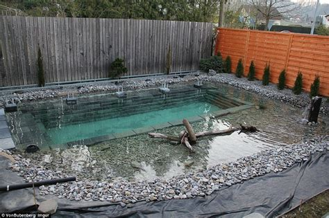 backyard swimming ponds swiss family spends 34 000 and one year building natural
