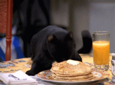 Sabina Cat Food sabrina the witch gifs find on giphy