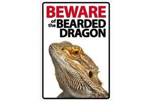 Decor Cabinets Ltd Beware Of The Bearded Dragon Sign Livefood Uk Ltd