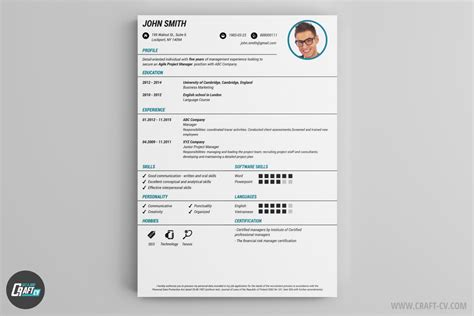Example Of A Professional Resume by Cv Maker Professional Cv Examples Online Cv Builder
