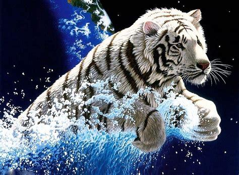 imagenes para fondo de pantalla en movimiento white tiger wallpapers free wallpaper cave