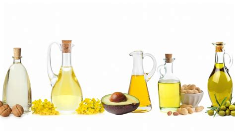 healthy fats and oils 50 healthy foods wisemovement