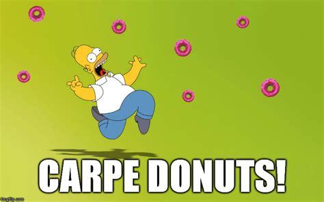 donut meme donut memes toaster turtle by raphaelsgirl on deviantart