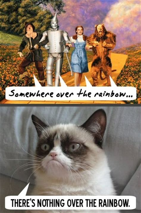 Cat Rainbow Meme - 1000 images about all hail grumpy cat on pinterest
