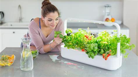 the smart garden smart garden arriva la nuova serra domestica diredonna