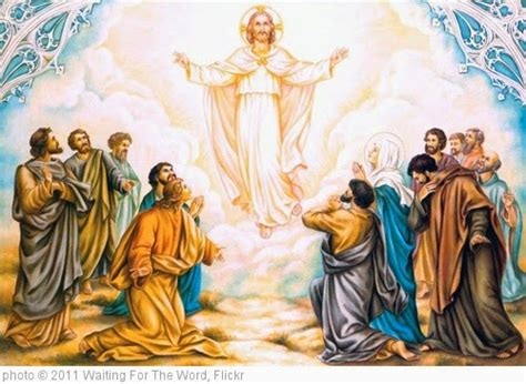 an open letter from the lectionary an open letter to jesus on this whole 1074