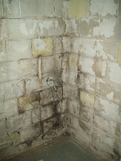 Bad cinder block walls in basement