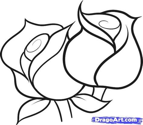 rose pattern line drawing image result for simple line drawing for kids pencil