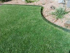 landscape edging metal what should you know in buying metal landscape edging