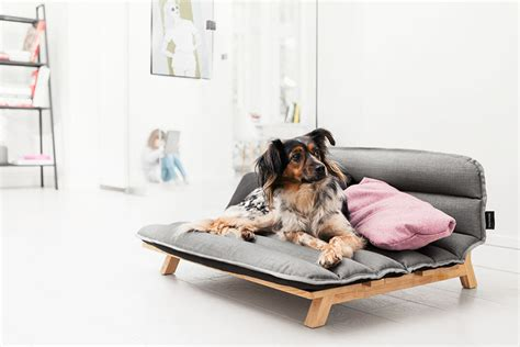 dog beds that look like couches design contemporist page 18