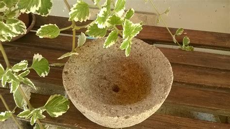 vasi di pandora i vasi di pandora vasi e fioriere originali in pietra