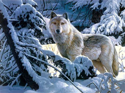 black and white wolf 17 desktop wallpaper wallpapers lobos en hd im 225 genes taringa