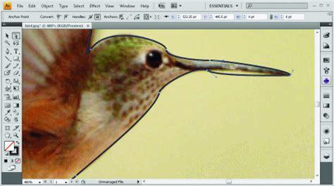 modificare foto con testo come modificare testo su photoshop fare di una mosca