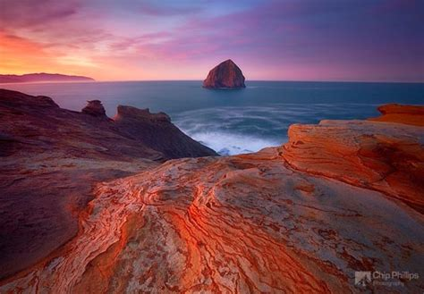 stunning seascapes photograph  chip phillips design swan