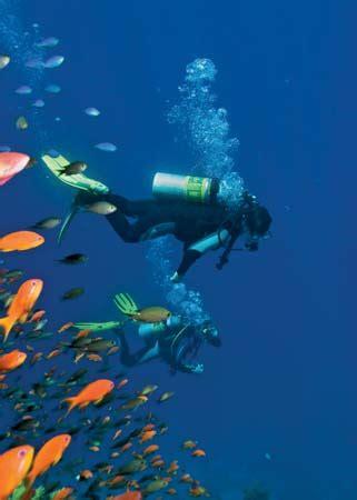 underwater dive scuba diving britannica