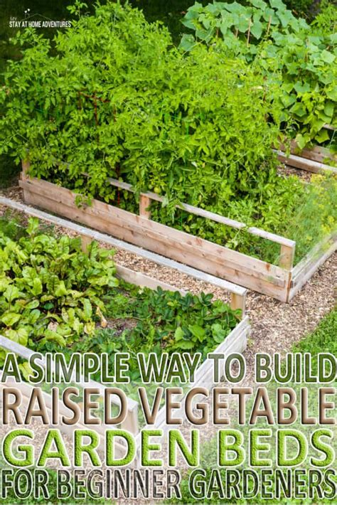 How To Build A Raised Bed Garden Frame How To Build Raised Vegetable Garden Beds For Beginner Gardeners