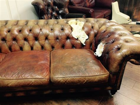 dog chewed couch chesterfield sofa restoration the leather surgeons