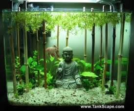 best fan for aquarium best 20 betta tank ideas on pinterest betta aquarium