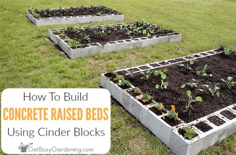 how to make a raised garden bed using concrete blocks