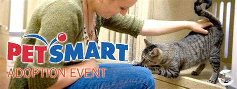 petsmart adoption adoptable dogs and cats at petsmart saturday december 12 11a to 3p the humane