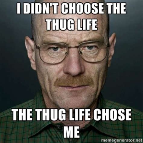 Breaking Bad Meme - the thug life breaking bad w630
