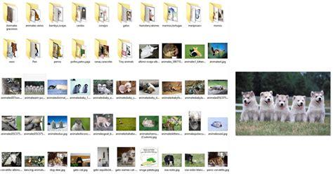 windows 10 imagenes vista previa reparar vista previa de im 225 genes o iconos en windows