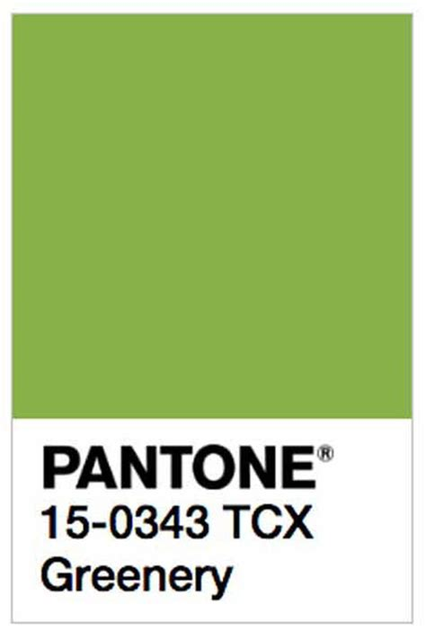 Pantone Unveils Two Colors Of The Year For 2016 | pantone unveils color of the year 2017 pantone 15 0343