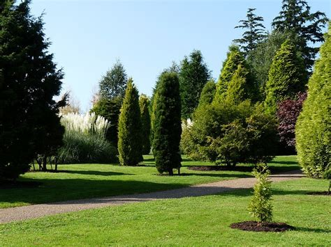 Pine Tree Gardens by 17 Best Images About Pine Tree Gardens On