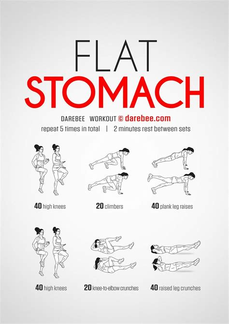 flat stomach workout exercise guides  workout