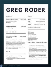 Professional Resume Samples 2017