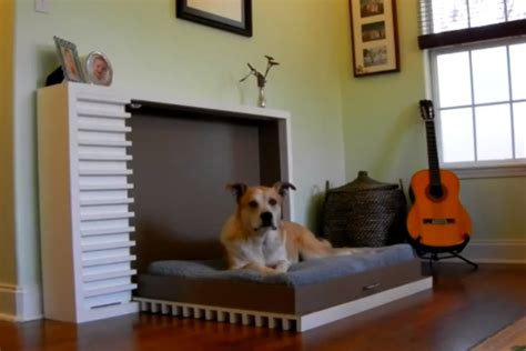 Modern Fold Out by The Modern Fold Out Pet Bed By Murphy S Paw Design Is