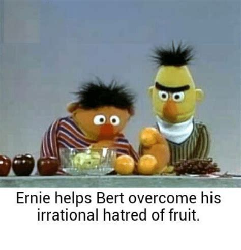 Ernie Meme - pa do ernie helps bert overcome his irrational hatred of