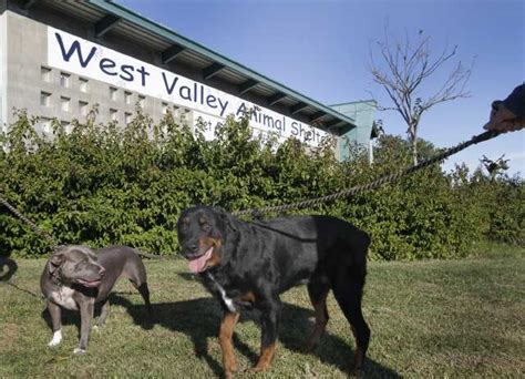 16 southern california animal shelters to hold big