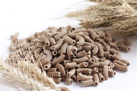 elenco alimenti ricchi di fibre quali sono gli alimenti ricchi di fibre elenco
