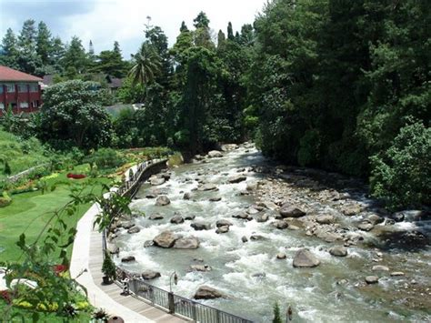 Hotel Bravia Bogor Indonesia Asia cimory riverside bogor restaurant reviews phone number