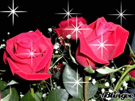 imagenes con movimiento de rosas rojas im 225 genes de flores con movimiento para enamorar en google plus