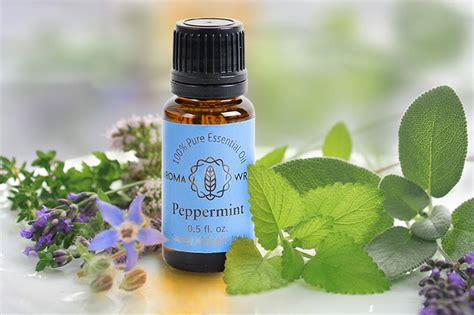 Aromatherapy Essential peppermint aromatherapy essential