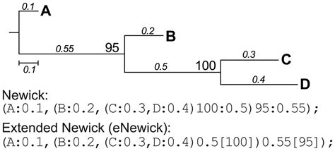 newick format converter physortr a fast flexible tool for sorting phylogenetic