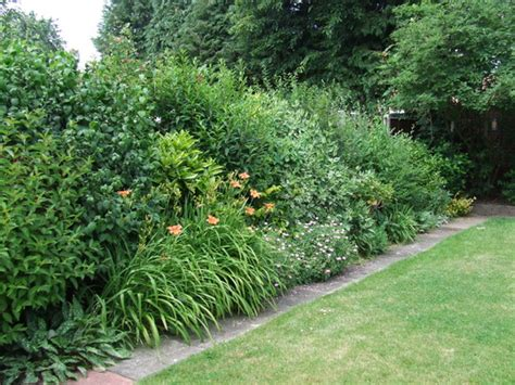 the shrub border in may 2008 grows on you