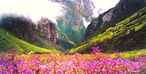 facebook uttarakhand vally of flowers